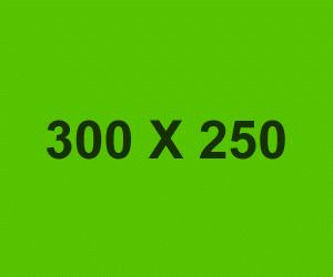 ads 300x250 300x250 - ads-300x250