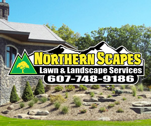 northern scapes ad - Northern Scapes