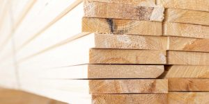 pile of cut wood 300x150 - pile-of-cut-wood